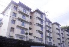 市営住宅外壁塗装